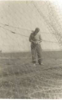 salmon nets